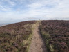 Approaching Carlton Moor trig pillar.