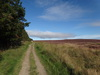The path across Great Ayton Moor.