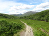 The path heading northeastwards up Glen Falloch.