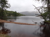 The foreshore of Loch Lochy.
