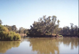 AF34	The Murray River viewed from the paddlesteamer.