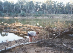 AG08	Sam cutting wood beside the Murray River at Cobram.